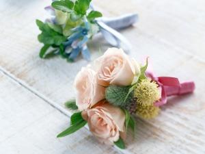 flower_45_20090317_1568087850